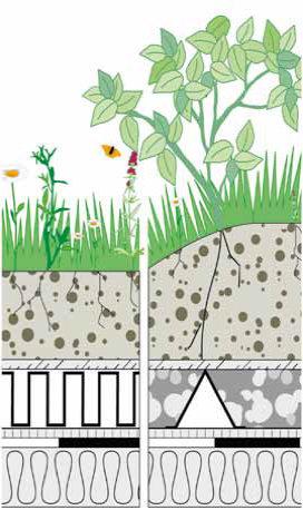 Dachbegrünung und Photovoltaik – Blühende Industriegebiete